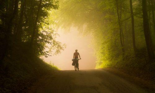 Vélo sur les chemins